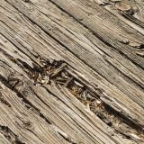 old wooden deck that needs attention